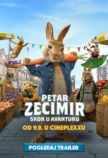 Petar Zecimir: Skok u avanturu  - Sink